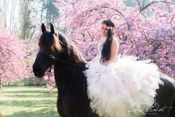 Une jolie seance avec un cheval de race frison au parc des sceaux