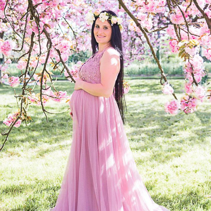 séance grossesse photo cerisier japonnais